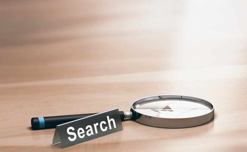 plugin ricerca wordpress